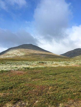 Vestre Slidre Municipality, Norway: photo5.jpg
