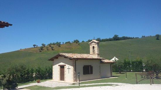 Agriturismo Borgo Umbro: 20160815_131137_large.jpg
