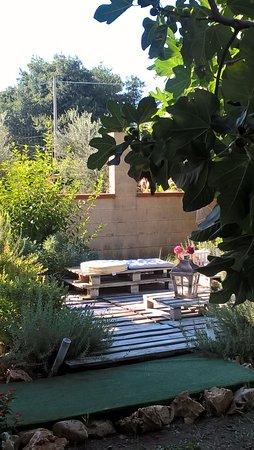 Nel Giardino C E Questa Aiuola Di Erbe Aromatiche Con Al Centro