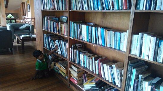 Villa Rosa: Library