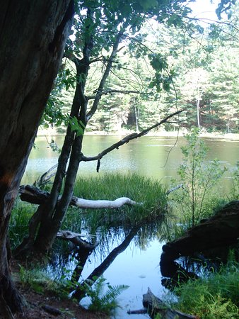 Litchfield, CT: one of the ponds