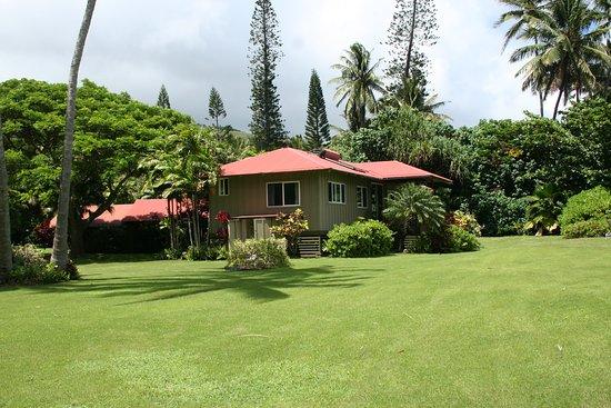 Kaunakakai, هاواي: House from the yard