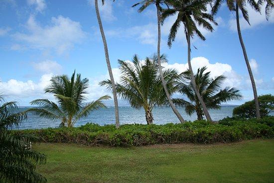 Kaunakakai, Hawái: that view!