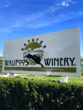 Waupoos Estates Winery: photo0.jpg