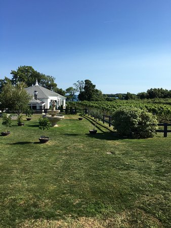 Waupoos Estates Winery: photo4.jpg
