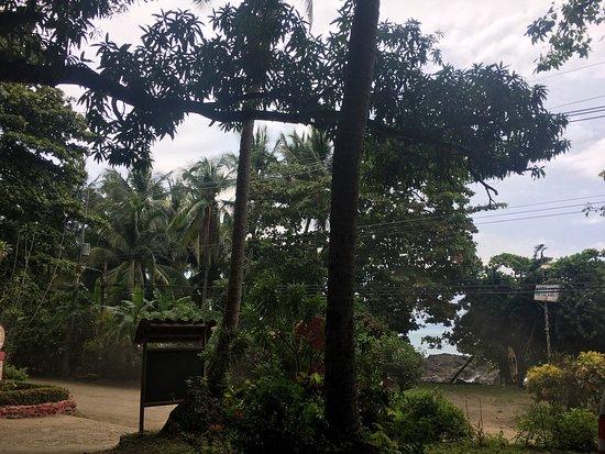 Hotel Los Mangos: photo1.jpg
