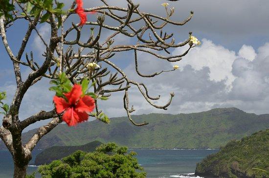 Νησιά Marquesas