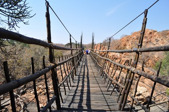 rope wire bridge at the bush babies monkey sanctuary picture of