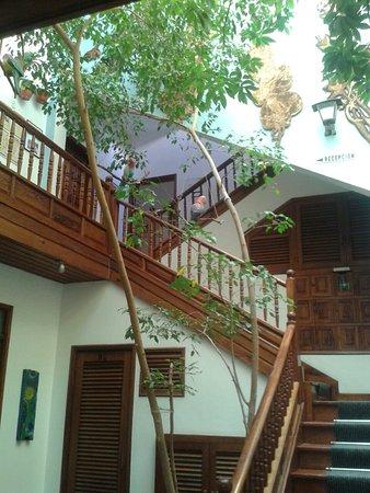 Apartamentos La Fuente : 20160906_150207_large.jpg