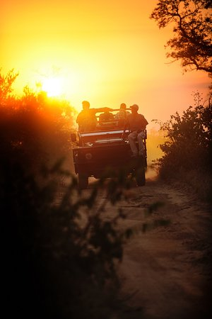 African Tracks Safaris