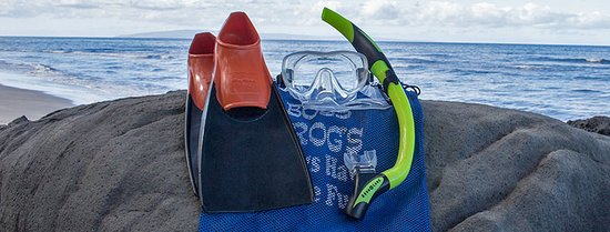 Boss Frog's Dive and Surf Shop: Boss Frog's Snorkel Rental Maui