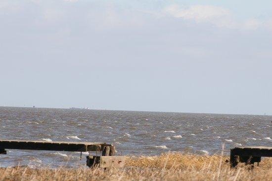 Toller Strand in Dangast.