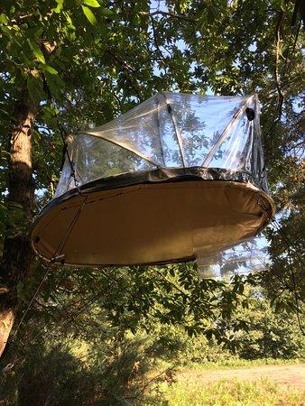 Brion, Francia: Notre bulle dans les arbres à 3 mètres de haut !