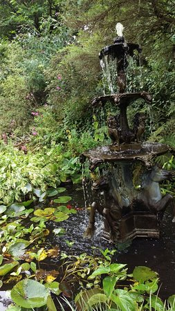 Pinetum Park and Pine Lodge Gardens : IMAG4816_large.jpg