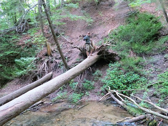 Owen Sound, Canada: along the trail