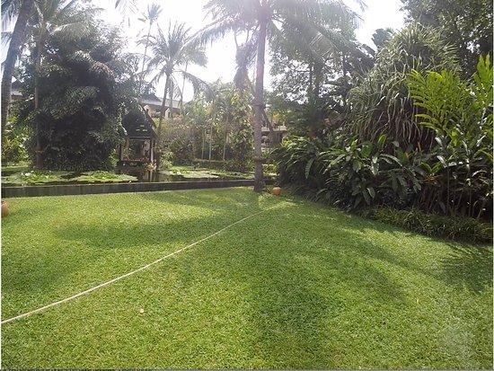Anantara Bophut Koh Samui Resort: Garden