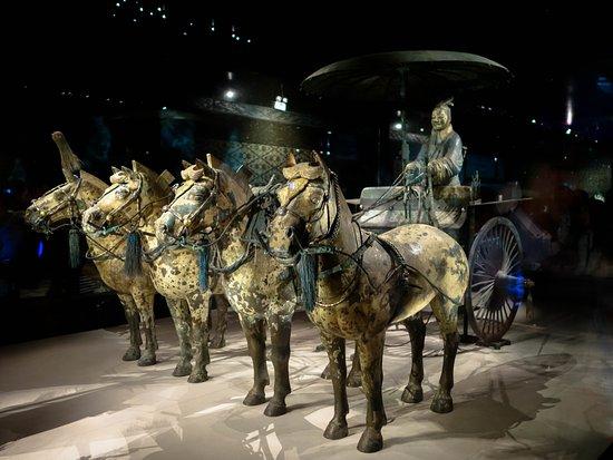 متحف تشين تراكوتا للمحاربين والخيول