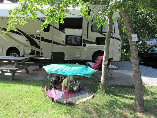 Holly Shores Camping Resort: Our RV Site - Full Hookup
