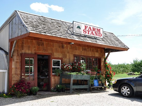 Connecticut: Lapsley Orchard - Pomfret, CT - Farm Stand