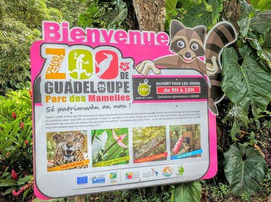 Bouillante, Guadalupe: IMG_20160829_110605_large.jpg