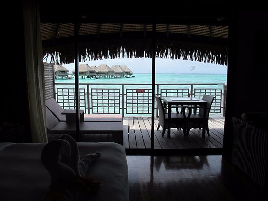 From Lagoon Bungalow 54 Picture Of Hilton Moorea Lagoon