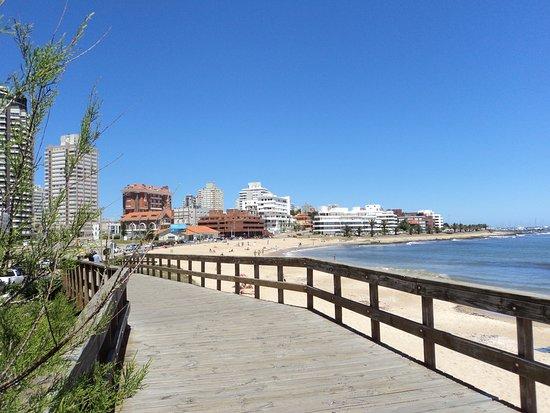Playa Mansa: Fotos de outubro (primavera) 2013
