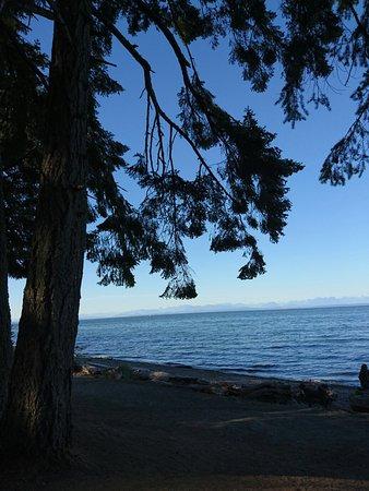 Courtenay, Canada: DSC_0339_large.jpg