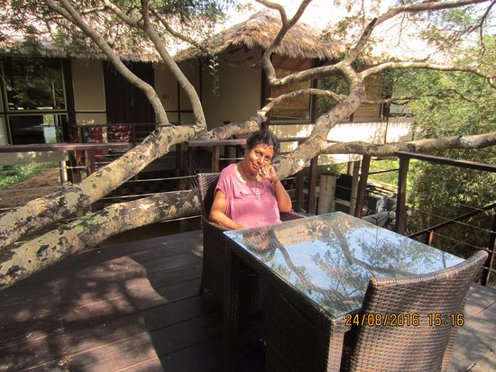 Thirappane, Sri Lanka: The chalet and elevated sitting area outside