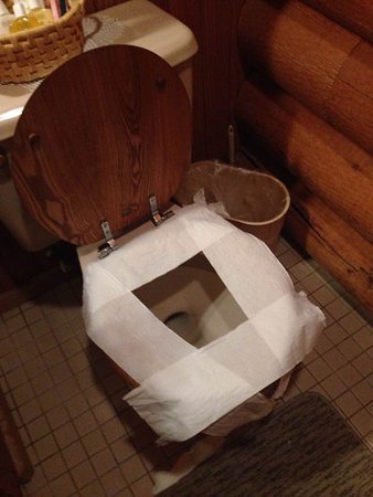 Homemade toilet seat covers to increase sanitation - Picture of ...