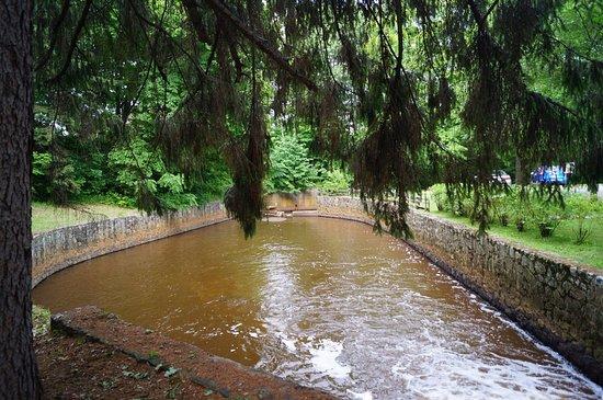 Moulin seigneurial de Pointe-du-Lac : Ruisseau du domaine