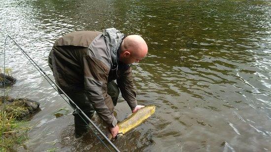 Selkirk, UK: Tweed Salmon