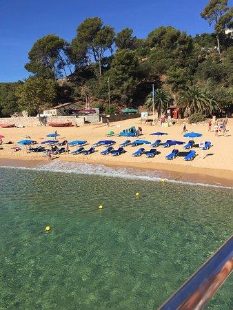 Costa d'en Blanes, Spain: photo1.jpg