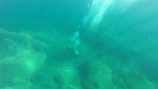 Ischia Diving: D9620B3DAE2C1E86FF645695EB8179C6_large.jpg
