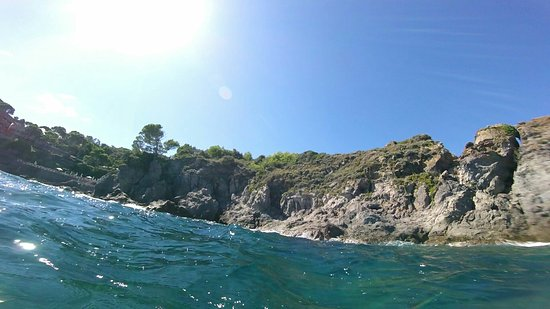 Ischia Diving: 235366120D7778F92A36E7F0C55C3EE6_large.jpg