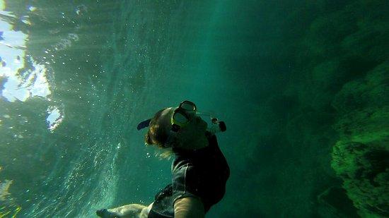 Ischia Diving: 7C28D2F5B2551B028C8AF9E0758A5E57_large.jpg