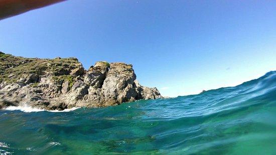 Ischia Diving: 35CB225751D2FE5B6A89244B6F74D8C6_large.jpg
