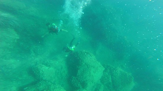 Ischia Diving: 76647BFE686EC2F8B65934C8DFE34DC9_large.jpg