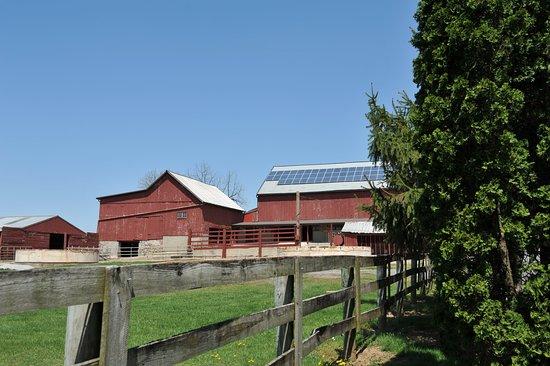 Mount Joy, PA: Barn.