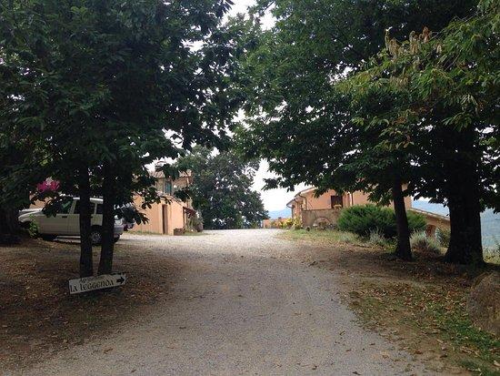 Selva di Santa Fiora, Italy: Vialetto di ingresso
