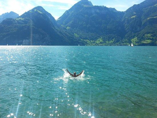 Tellskapelle : Люцернское озеро