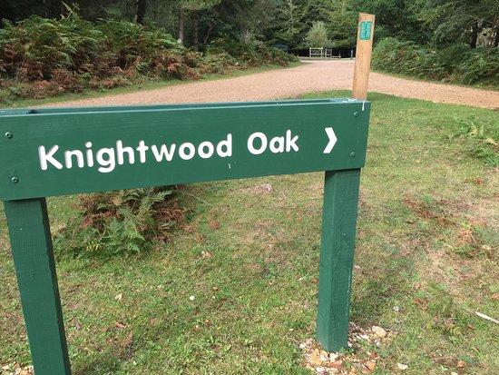 Knightwood Oak Tree: Clear sign post