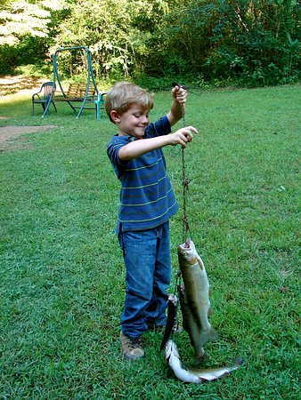 Almond, NC: So proud of his first catch.
