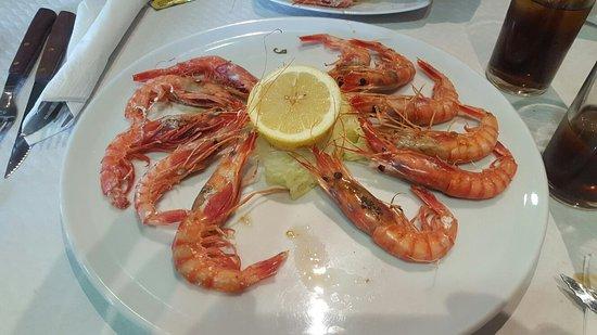 Pozo Alcon, Espagne : Trato excelente y 1 ambiente muy familiar,la comida muy rica,nos dejamos guiar por las opiniones