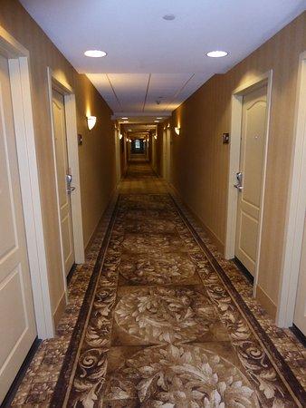 Hampton Inn & Suites Wells-Ogunquit: 3rd floor corridor
