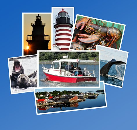 Downeast Charter Boat Tours: Tour