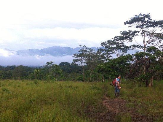 Laguna Miramar: El camino tiene partes muy bellas!