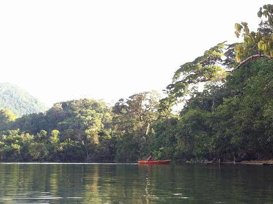 Laguna Miramar: Pueden rentar kayac