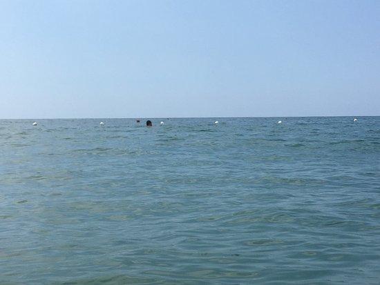 Ocean Blue beach: Ocean blue