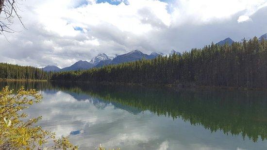 Herbert Lake: 20160903_164547_large.jpg