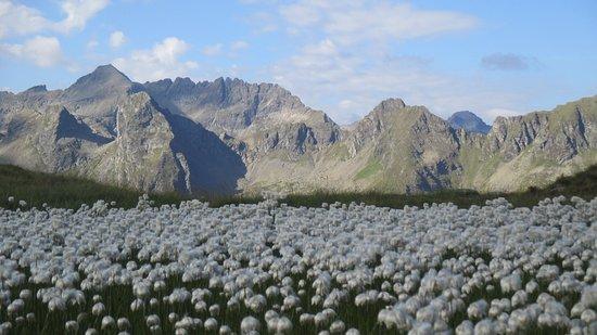 Trekking Austria